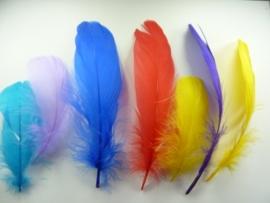 HE.20-4885705- ca. 15 stuks ganzenveren van 7-8cm lang kleurenmix