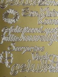 st969- stickervel met tekst gefeliciteerd met jullie huwelijk / kleine op komst 10x23cm goud