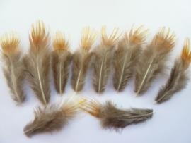AM.150.B- 10 stuks goudfazant mini veertjes van 4-9cm lang