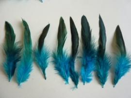 AM.108- 15 stuks hanenveren turquoise met oliekleurige gloed van 12-18cm lang