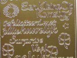 st670- diverse teksten huwelijk en in verwachting goud 10x20cm