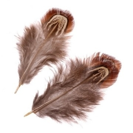 006617/0982- 1,5 gram fazantveren van 3 tot 7cm