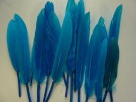 15 stuks eendenveren blauw/turquoise van 9 tot 15cm lang - SUPERLAGE PRIJS!