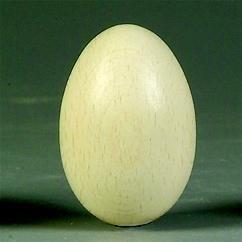 8706 408- 25 x houten eieren zonder gat 30x40mm