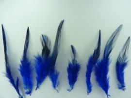 AM.33 - ca. 25 stuks (2 gram) hanenveren van 5 tot 12cm lang donkerblauw