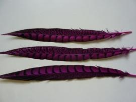 AM.203- 3 stuks lady emhurst veren fuchsia van 31-36cm