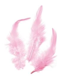 006621/0228- 16 stuks hanenveren van 6 - 10cm roze
