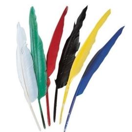 002543/0807- 6 stuks indianenveren in diverse kleuren van 25 tot 30cm