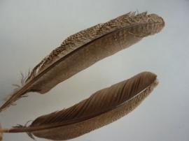 AM.105- 2 stuks luxe quils veren van 30 - 35 cm. lang