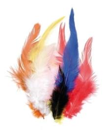 006621/0996- 16 stuks hanenveren van 6 - 10cm bonte kleuren mix