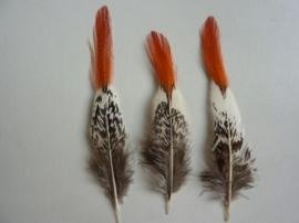 AM.106- 3 stuks lady amherst fazant red-tip veren van 9 - 14 cm lang