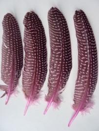 AM.91- 4 stuks parelhoen quinea veren roze van 18 - 23 cm