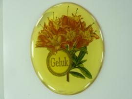 """SLK.205.B - transparante zelfklevende badge """"GELUK """""""