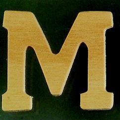 8735 619- 4cm houten letter M