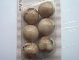 "12094/9432KA- 6 x hoogglans 18mm ""oilpaint"" beige/bruin"