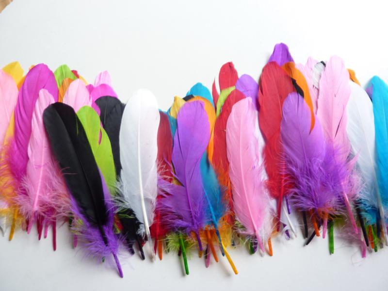 AM.412- 100 stuks ganzenveren van 15-20cm kleurenmix