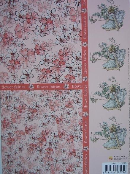 kn/530- A4 knipvel AANBIEDING flower fairies met achtergrond