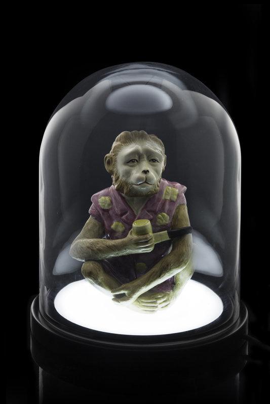 SUCKUK Belljar light dome globe