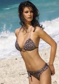 Wildlife bikinislip 42