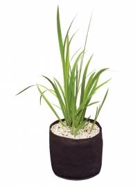 Plant Basket 25x25x20cm