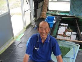 Japanse Kweker Aoki