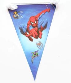 Vlaggenlijn Spiderman  (71115)