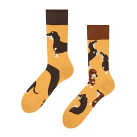 Vrolijke Sokken - Teckels - Mt. 39-42