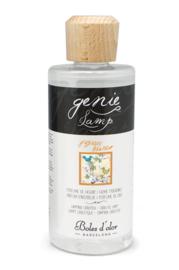 Boles d'olor - Witte Jasmijn