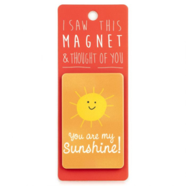 I saw this magnet and ... You are my sunshine