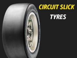 Dunlop circuit
