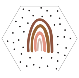 Label-R hexagon regenboog - wit