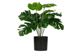 WOOOD monstera kunstplant