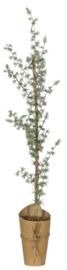 Ib Laursen kerstboom h75
