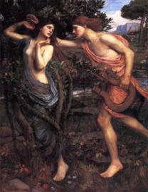 Waterhouse, Apollo en Daphne
