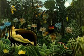 Rousseau, De droom