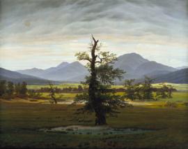 Friedrich, De eenzame boom