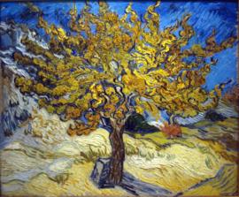 Van Gogh, Moerbeiboom