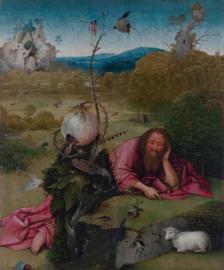 Bosch, Johannes de Doper in de wildernis