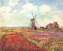 Monet, Tulpen van Holland