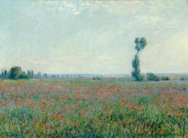 Monet, Papaverveld