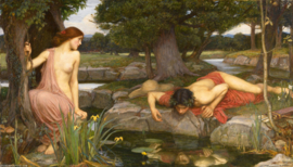 Waterhouse, Echo and Narcissus