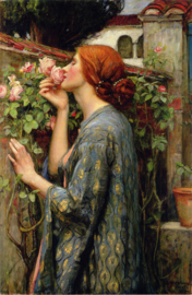 Waterhouse, My sweet rose