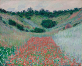 Monet, Klaprozenveld in een dal bij Giverny