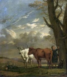 Potter, Een herder met koeien