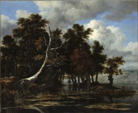 Van Ruisdael, Eiken bij een meer met waterlelies