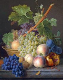 Van Dael, Stilleven van fruit op een marmeren richel