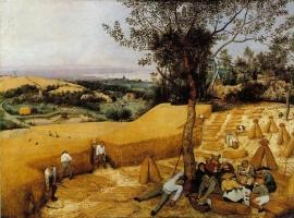 Bruegel, De oogsters