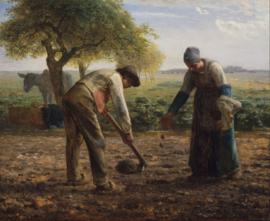 Millet, De aardappelplanters