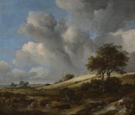 Van Ruisdael, Landschap met korenveld bij de Zuiderzee