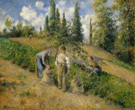 Pissarro, De oogst